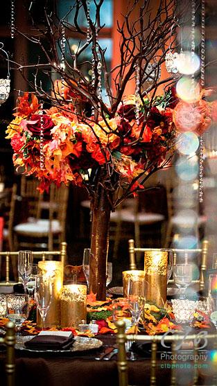 wedding-reception-at-ashford-estate