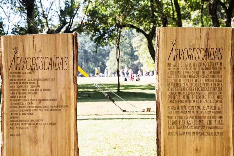 Intervention in Ibirapuera park in Sao Paulo, with a monumental tree planted upside down.