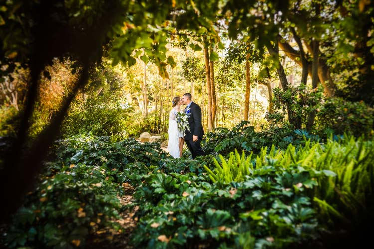 Newhall Mansion Wedding Photos