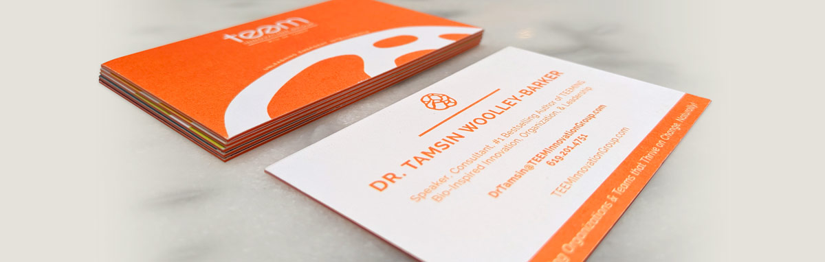 TEEM Innovation Group Business Cards