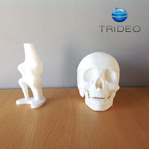 Impresión 3D: Cráneo y Rodilla