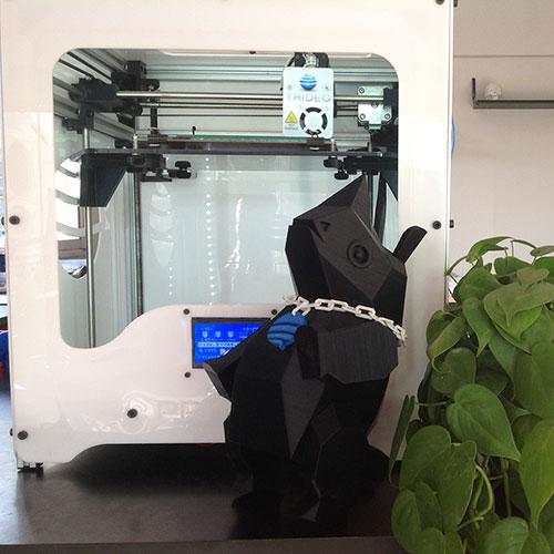 Impresión 3D: Rino