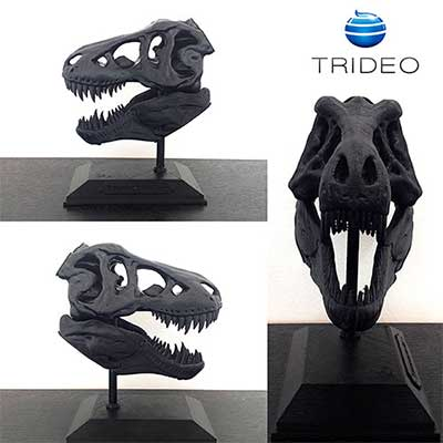 Impresión 3D: Esqueleto T-Rex