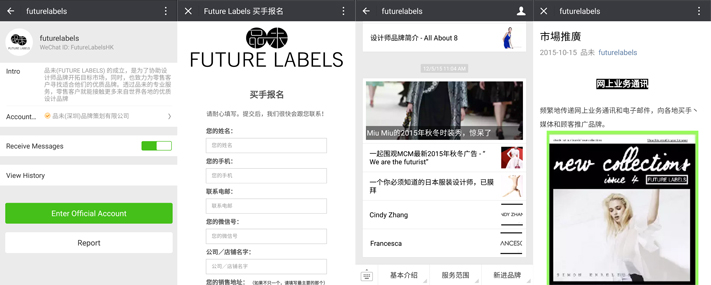 FUTURE LABELS GROUP LIMITED