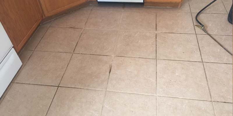 grout cleaning white grout