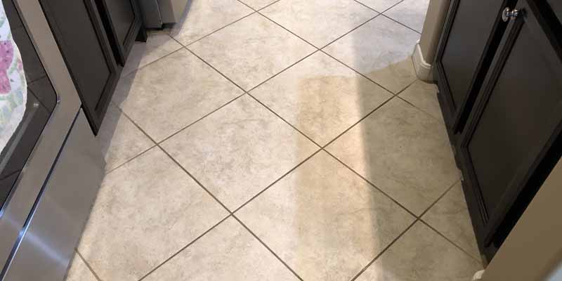 tile cleaning paradise valley