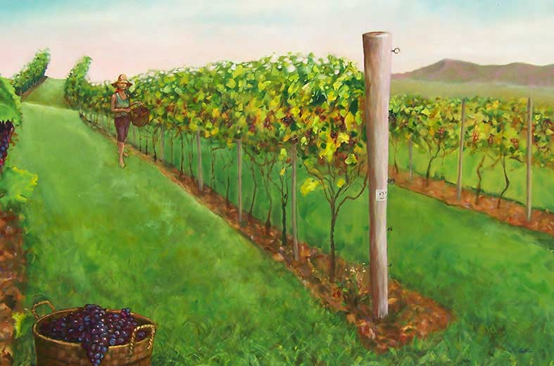 In the vineyard picking painting