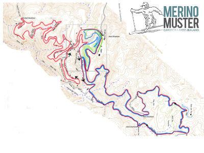 Merino Muster 42km