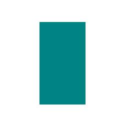 iPhone Payments API