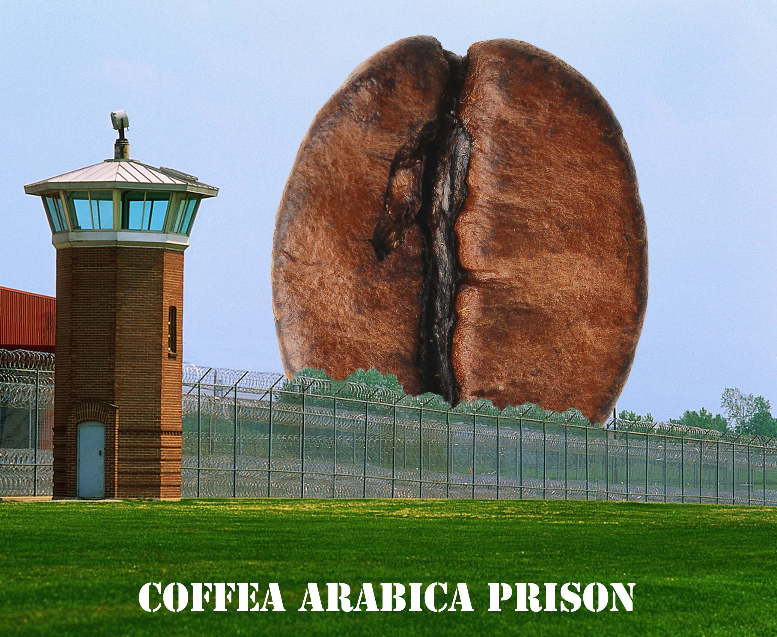 A large coffee bean in prison. Coffee beans are like prisons for flavor compounds