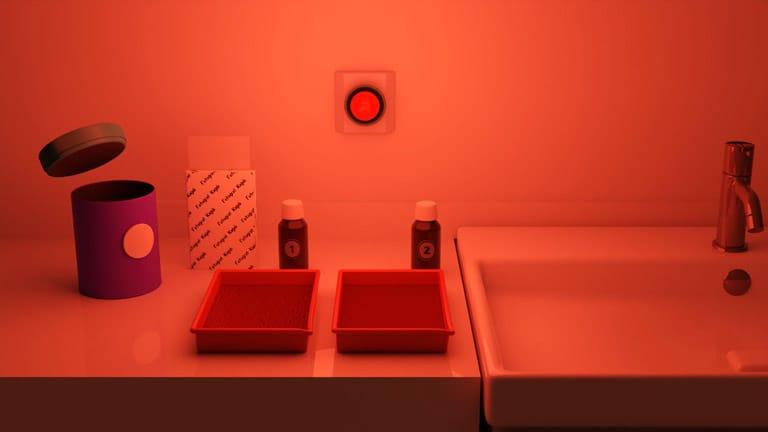 Karanlık Oda ve Fotoğraf Baskıları