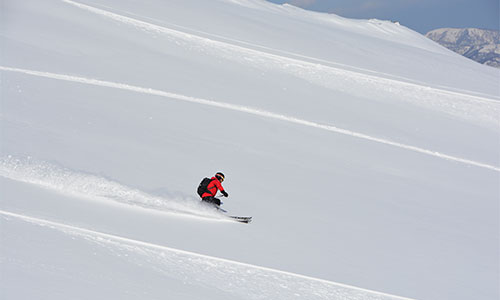 Cat Skiing Tour