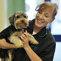 Abbey Vets Nurse with happy Dog