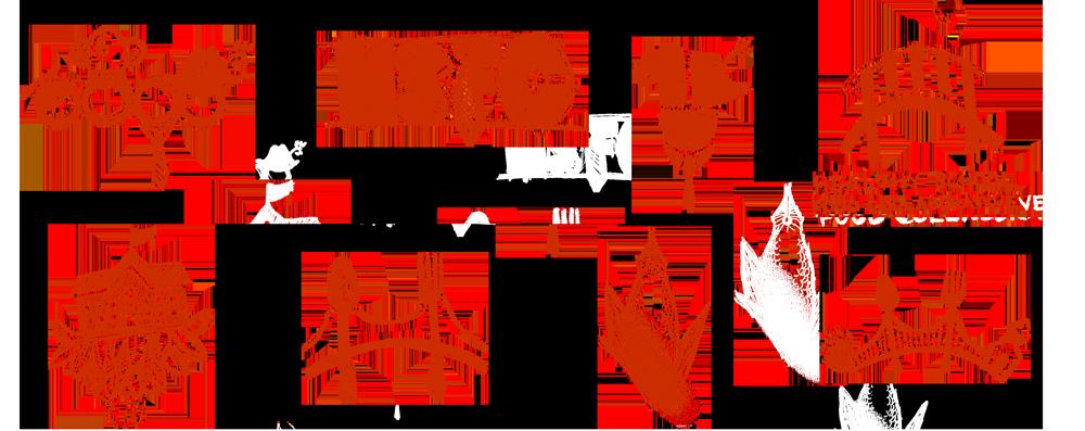 Custom Logo Design Mockups for THSFC