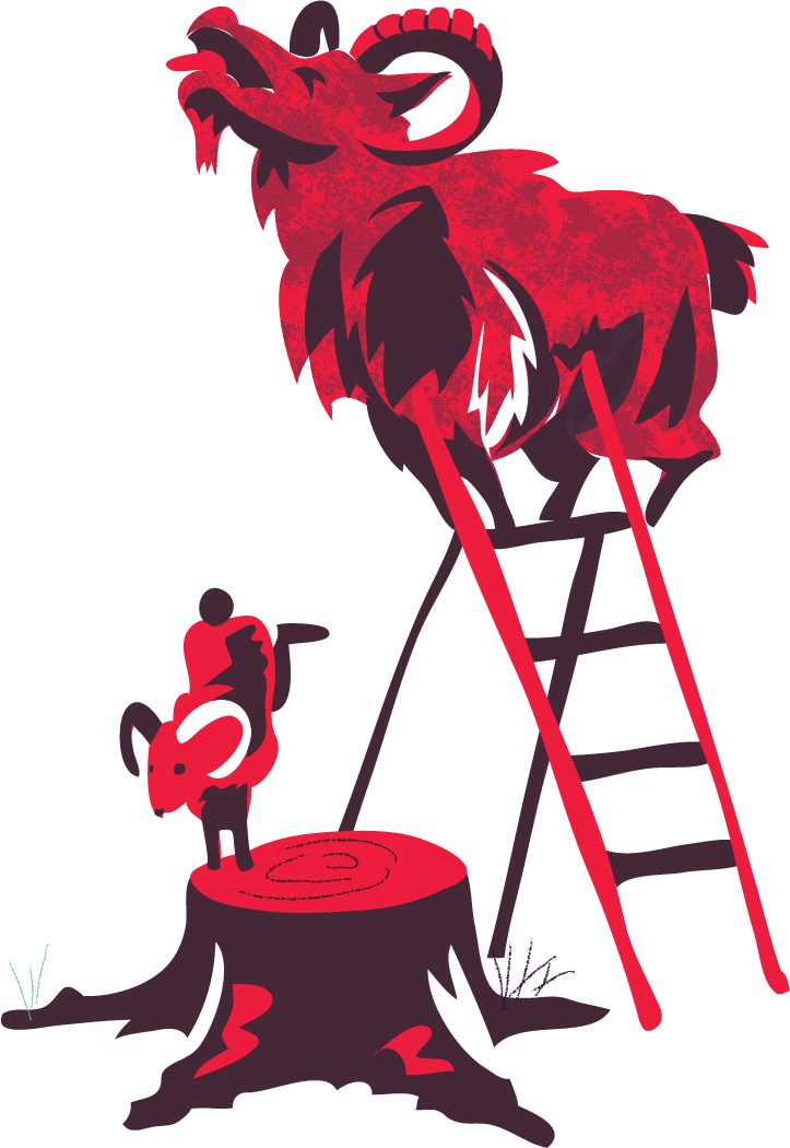 goats climb ladders