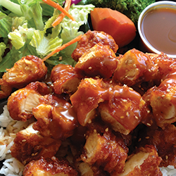 Image of Spicy Crispy Chicken covered in Kikku's signature brown sauce.
