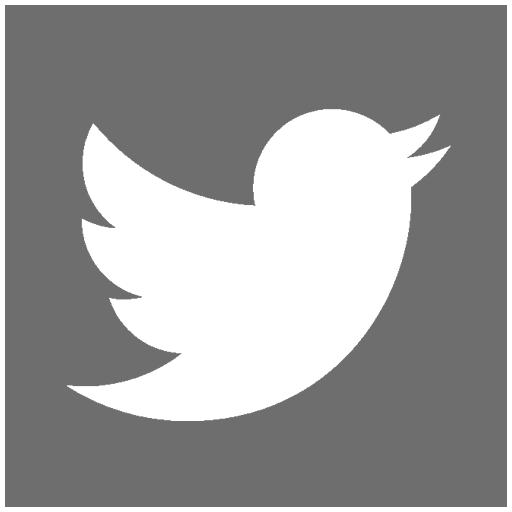 Twitter MEDIAL