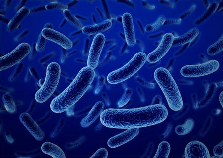 Biocides are a chemical substance or microorganism intended to destroy an organism.