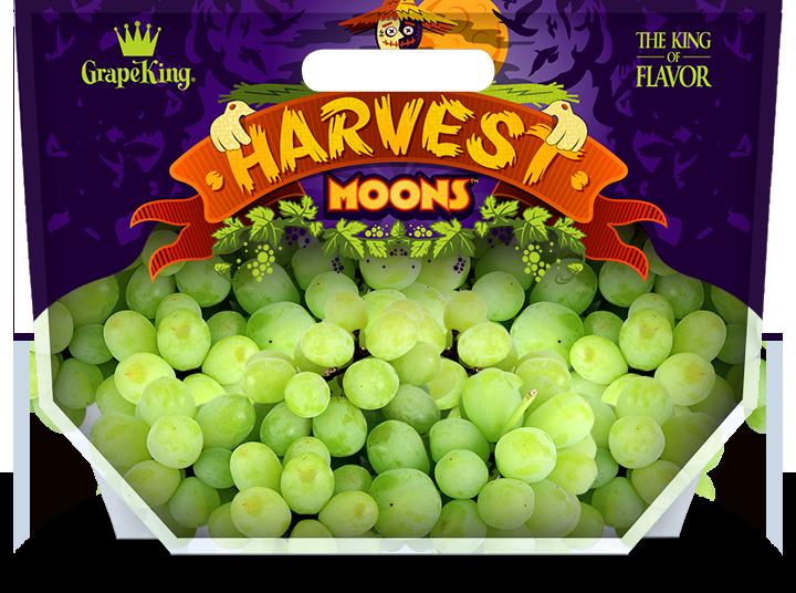 Harvest Moons Grape Pouch