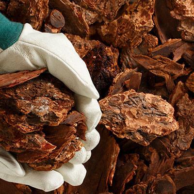 Bark mulch in winnipeg
