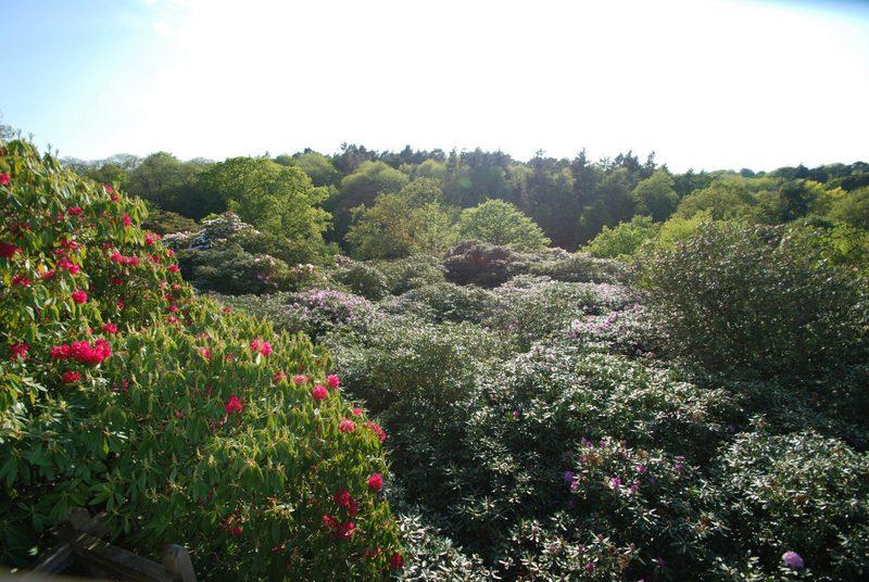 Sheringham Park, National Trust