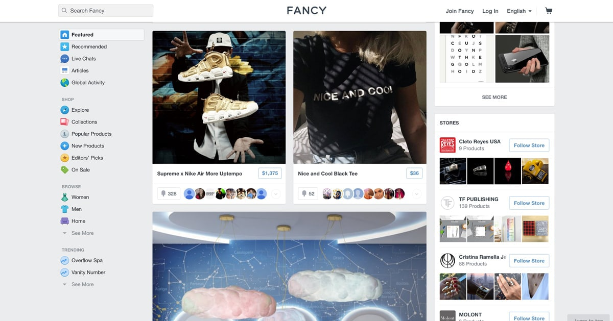 screenshot of the fancy website