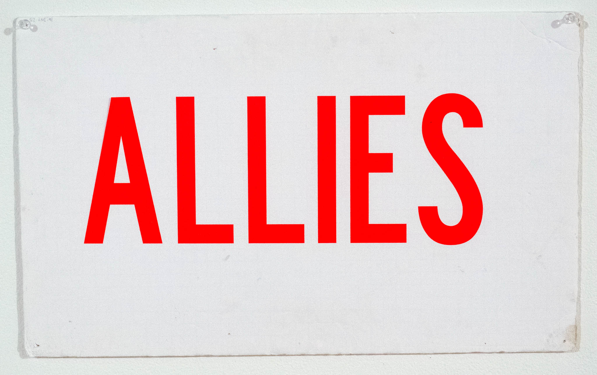 Allies / Don't bully