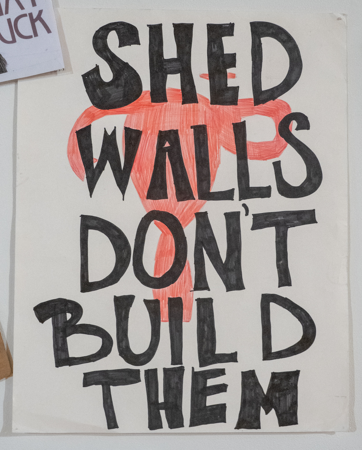 Shed Walls Don't Build Them