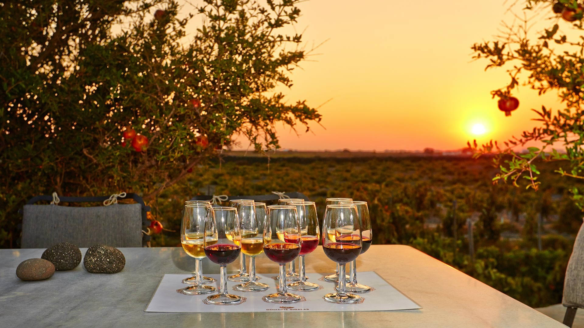 THE HISTORY OF GREEK WINE