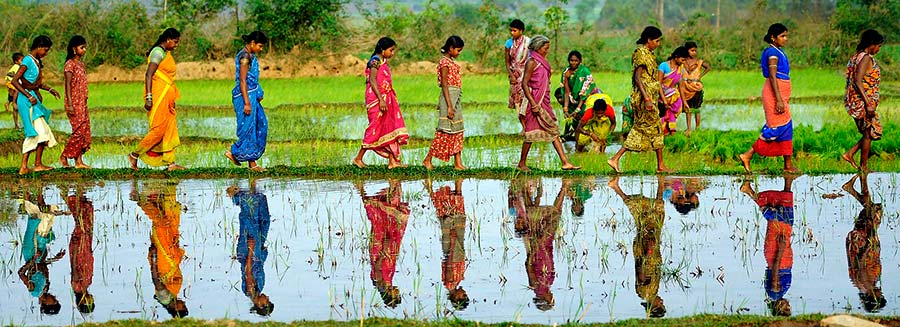 gender role of women in india