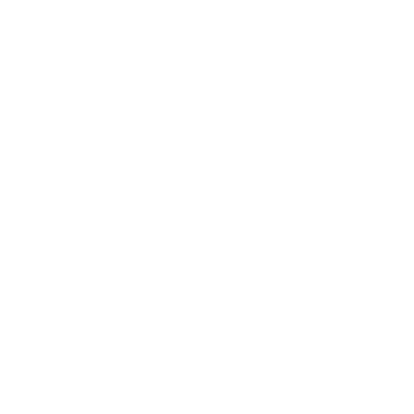 25 Years Emblem