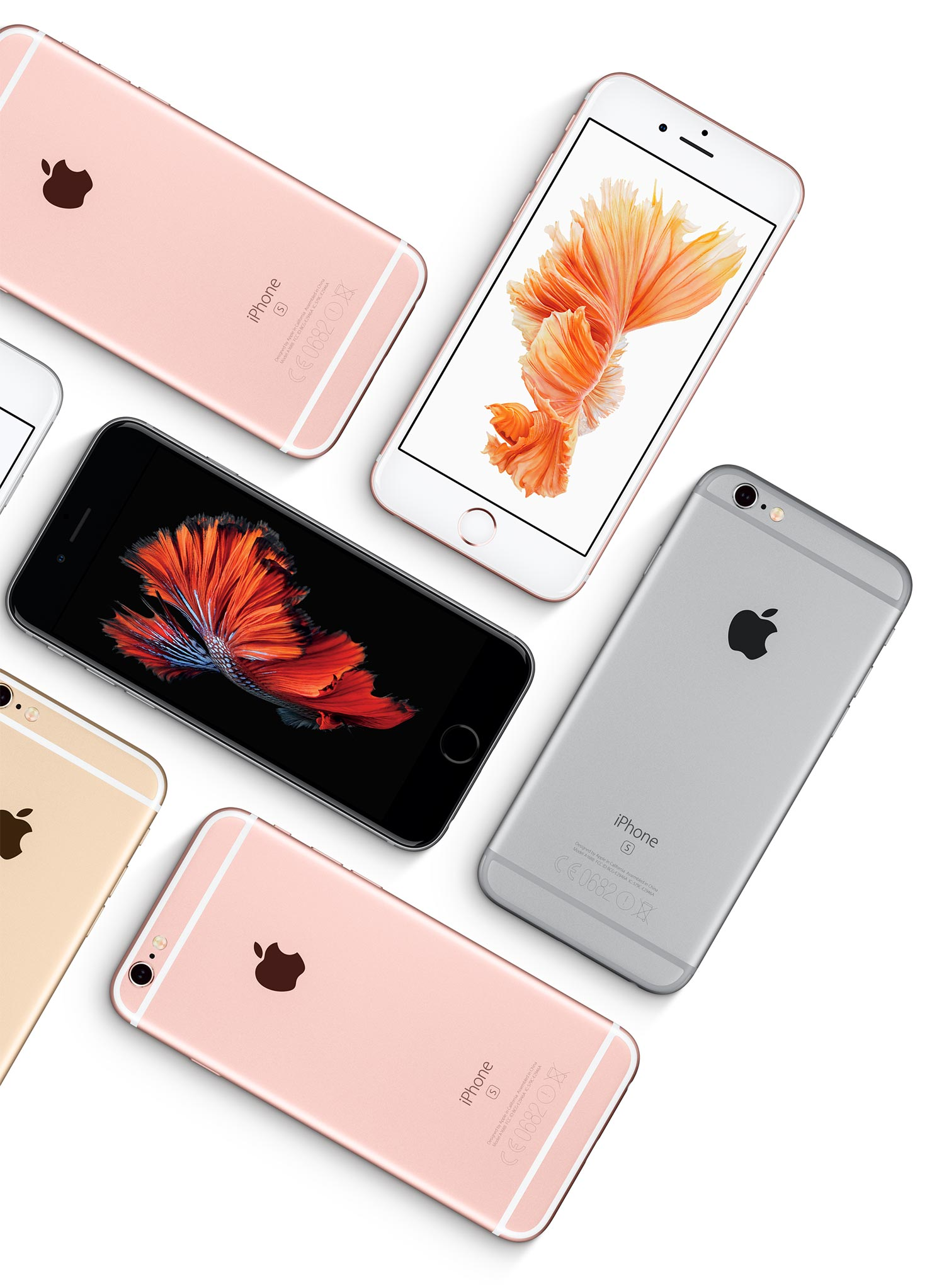 large iphone montage