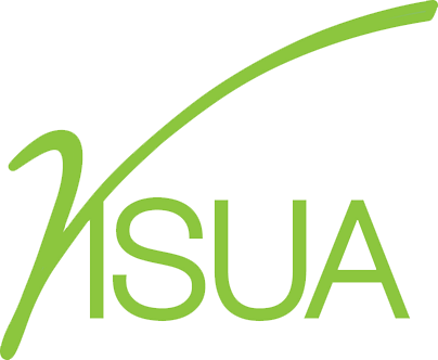 Visua Logo