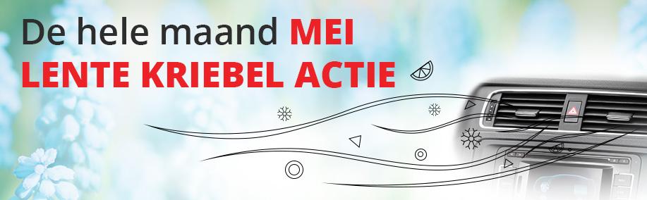 Lente Kriebel actie in de maand mei bij DriveIn!