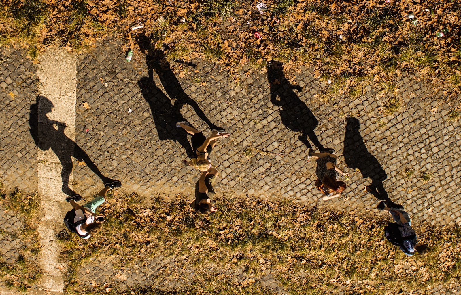 People on a walk with a focus on their shadows across the sidewalk