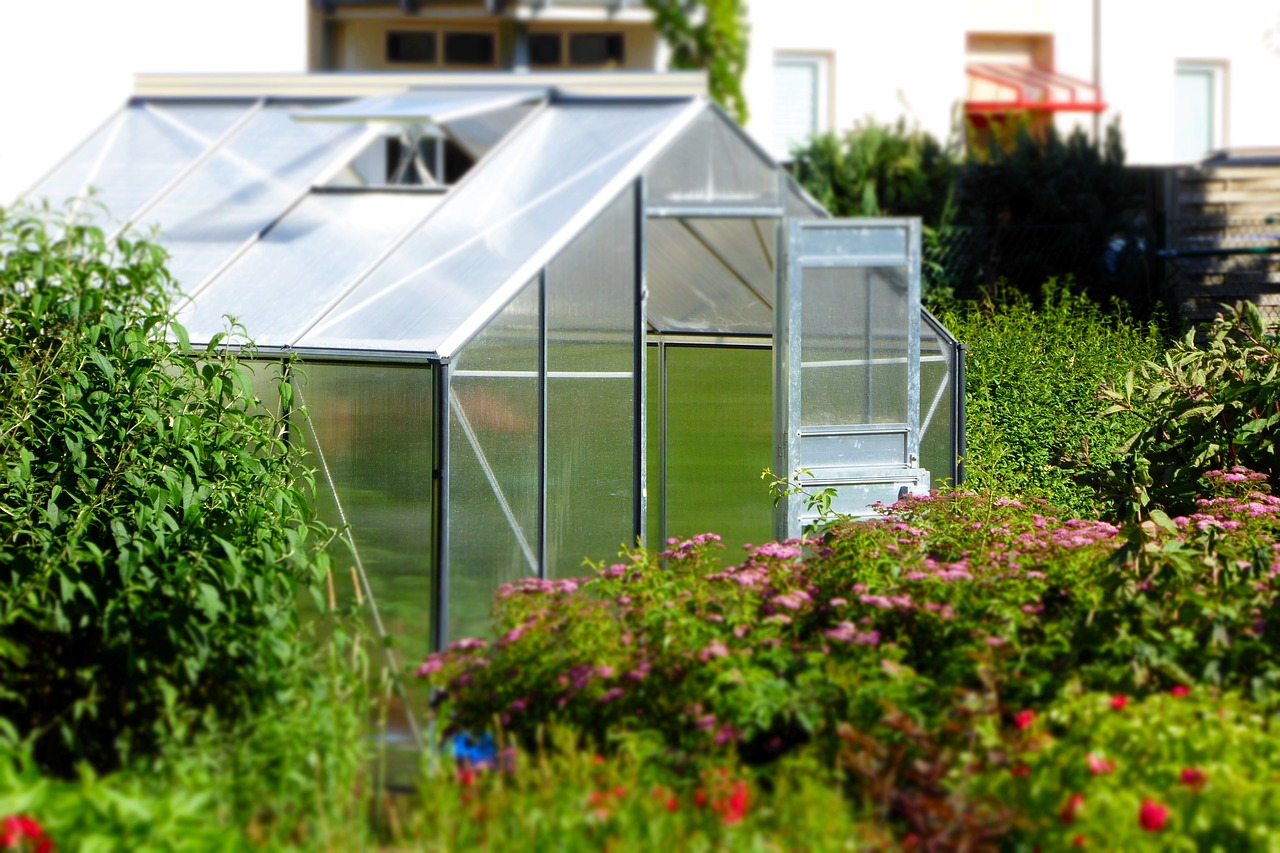 A stand alone greenhouse sits in a lush garden with the door open