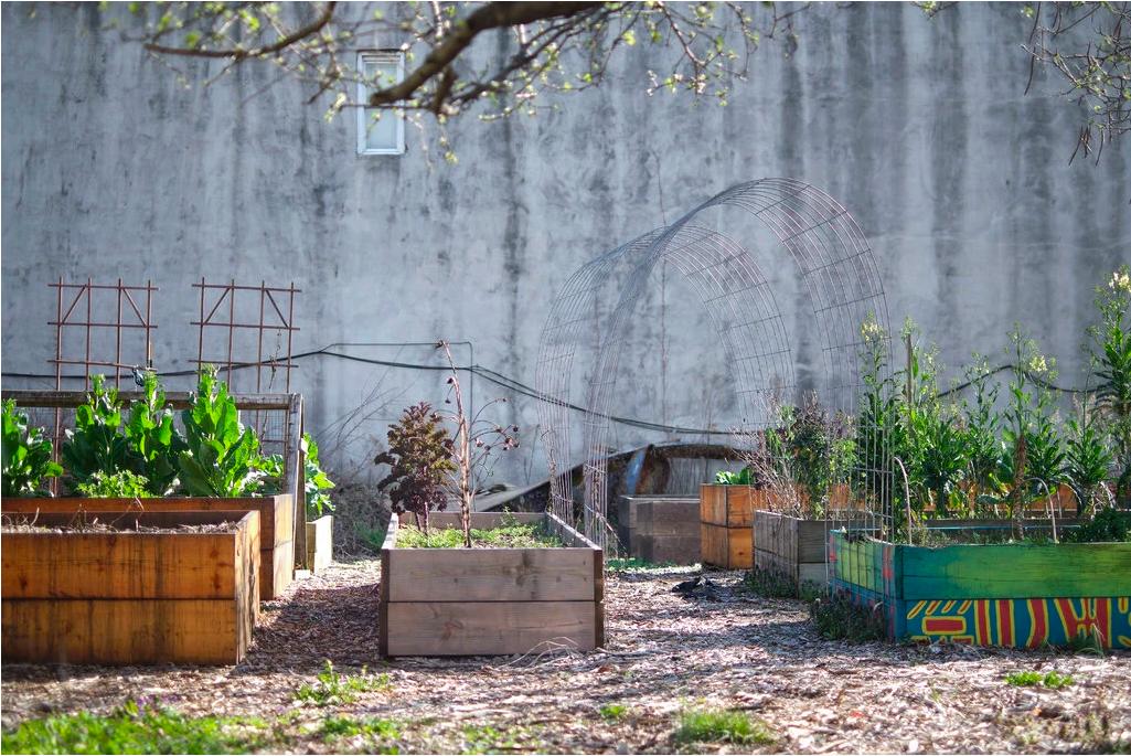 Tehuti Ma'at Community Garden in Brooklyn
