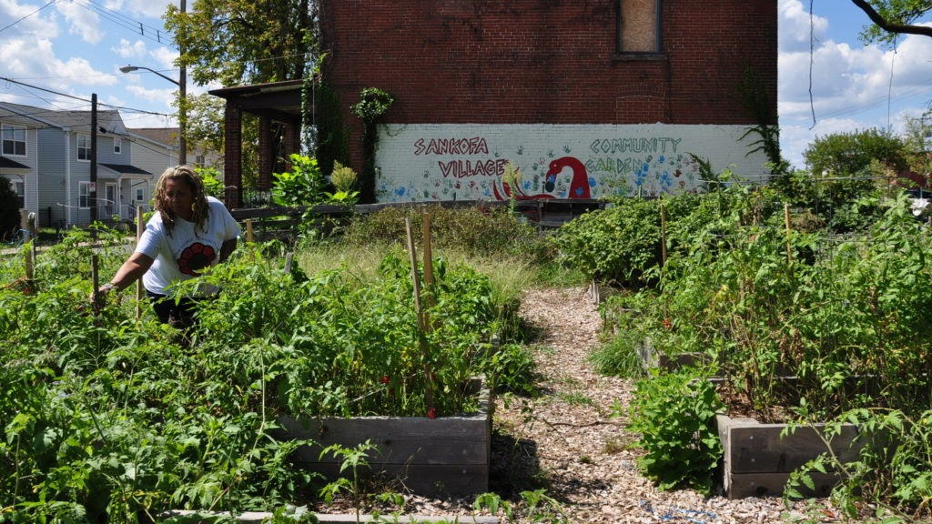 Sankofa Village Garden in Homewood in Pittsburgh.