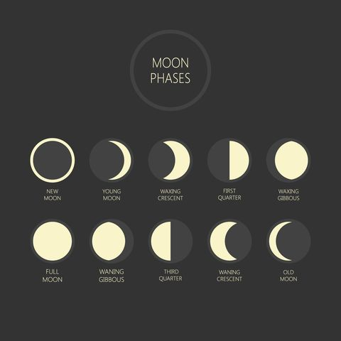 Graphics of different phases of the moon in black and white