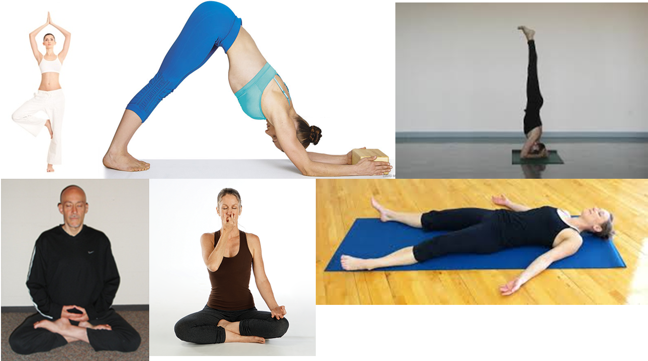 A collection of pictures of various people demonstrating yoga poses
