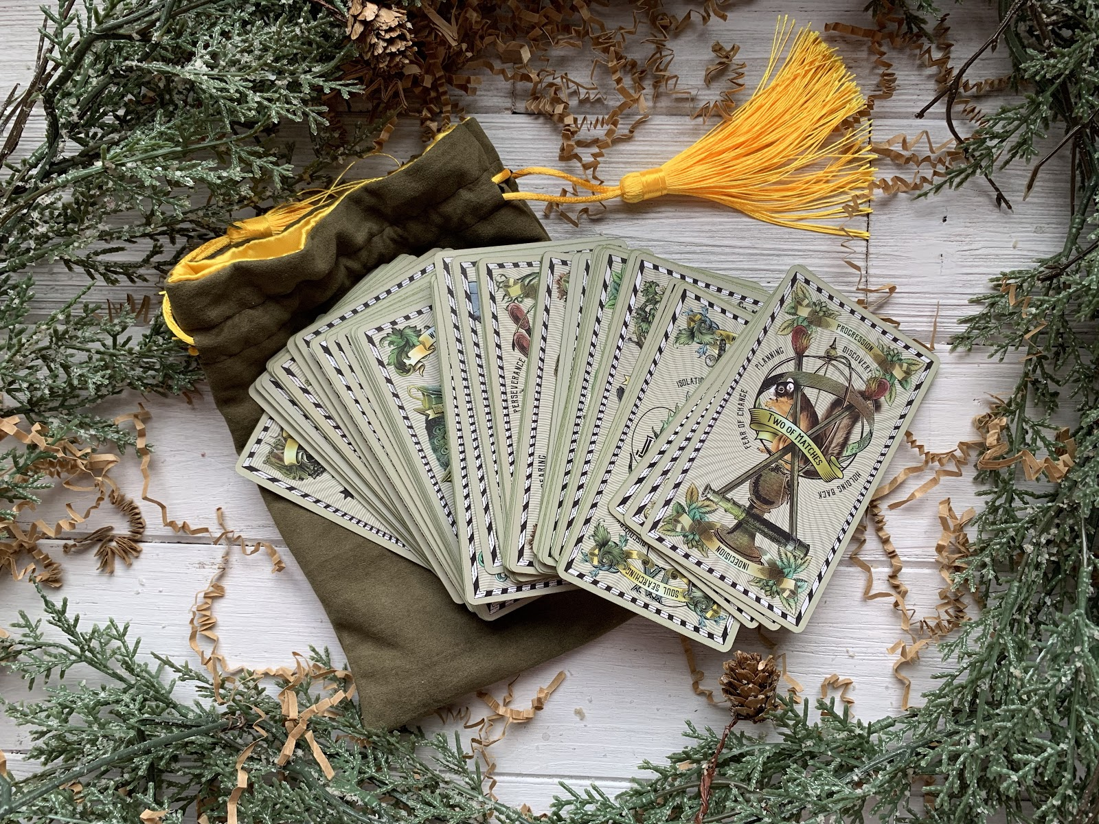 Green tarot cards from the 5-Cent Tarot Deck fanned out and surrounded by tree branches.