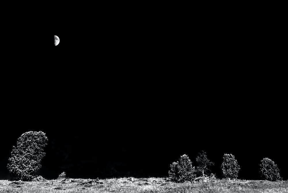 a half moon in the night sky