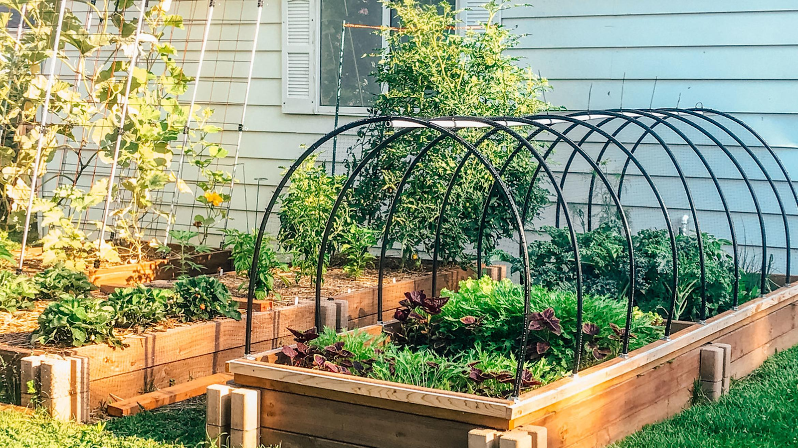 A beautiful outdoor vegetable and herb garden, created with recycled materials in an eco friendly effort.