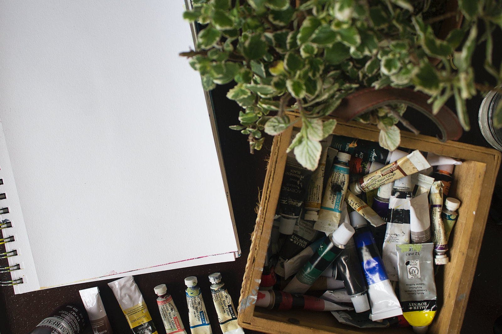 Art supplies for your favorite leo.