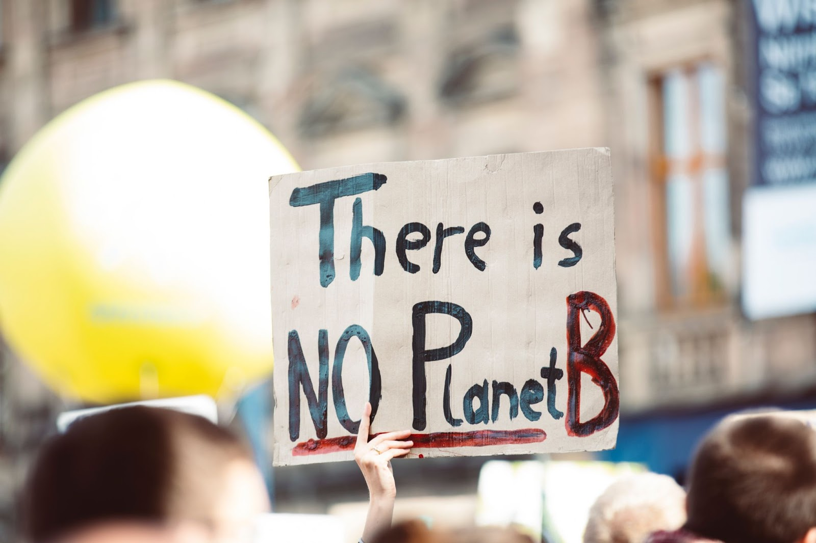"""Protestor holding a sign that reads """"There is No Planet B."""""""