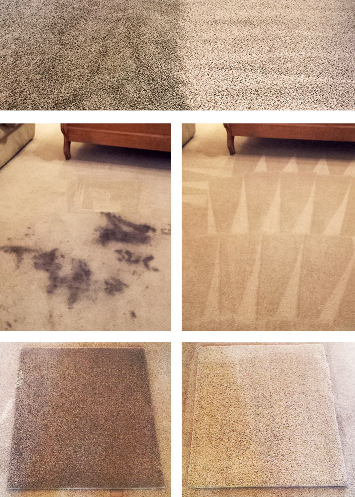 Clearly Clean Carpet Cleaning in Gilbert, AZ