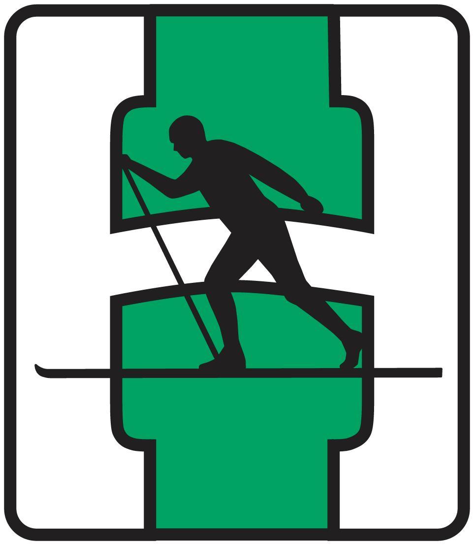 Heming Idrettslag Logo