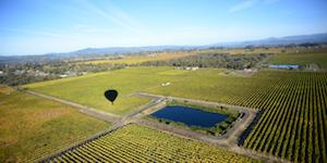 Sonoma County Hot Air Balloon Rides