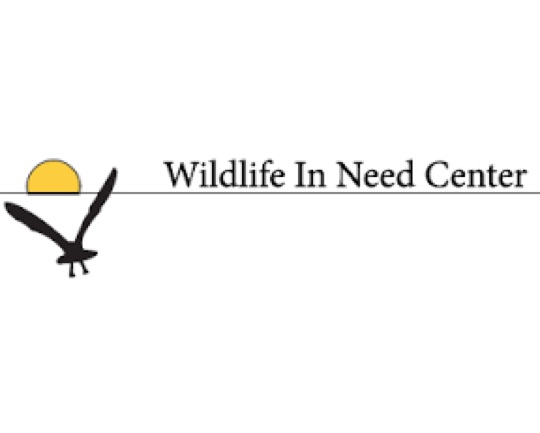 wildlife in need center