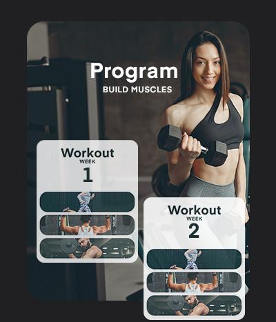 program explanation